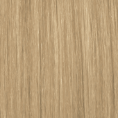 palette_com_deluxe_baseline_natural_color_light_blonde_to_medium_blonde_170x170