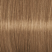 Color Expert Color Creme 8-65 Gold Blond